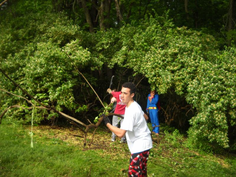 Cleaning up the woods around Park Tudor
