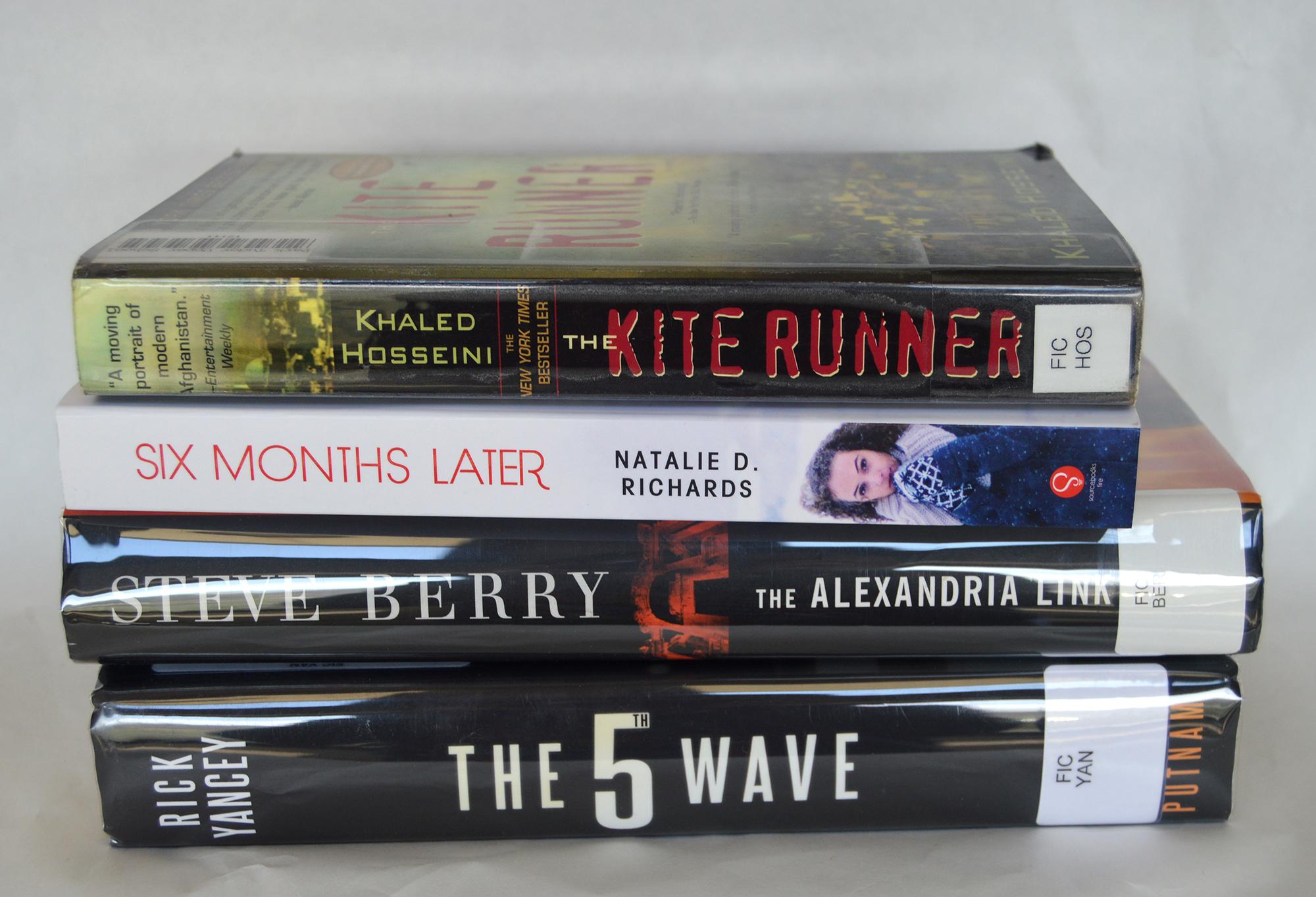 Karen Pellico's Books